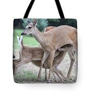 Hey, Can I Have Some? Tote Bag