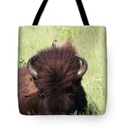 Hey There Is A Bird On Your Head Tote Bag