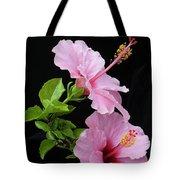 Hibiscus 7 V4 Tote Bag