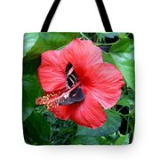 Hibiscus And Butterfly Diners Tote Bag