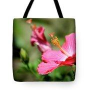 Hibiscus Bloom Tote Bag