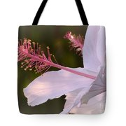 Hibiscus Bloom Pastel Tote Bag