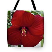 Hibiscus By Picket Fence Tote Bag