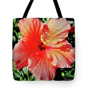 Hibiscus - Dew Covered - Beauty Tote Bag