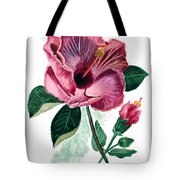 Hibiscus Dusky Rose Tote Bag