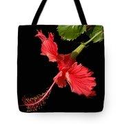 Hibiscus On Black Background Tote Bag