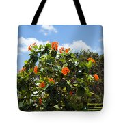 Hibiscus Rosasinensis With Fruit Tote Bag
