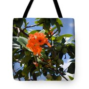 Hibiscus Rosasinensis With Fruit On The Indian River Tote Bag