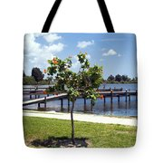 Hibiscus Rosasinensis With Fruit On The Indian River In Florida Tote Bag
