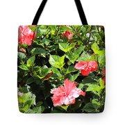 Hibiscus Tree Tote Bag