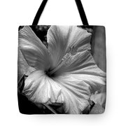 Hibiscus With An Infrared Effect Tote Bag