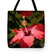 Hibiscus  Tote Bag
