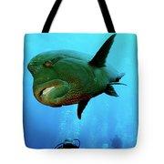 Hickey Tote Bag