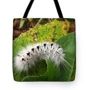 Hickory Tussock Tote Bag