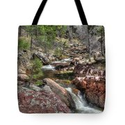 Hidden Beauty On The Trail Tote Bag
