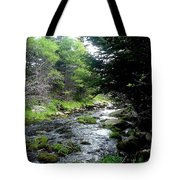 Hidden Brook Tote Bag