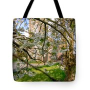 Hidden Church 1 Tote Bag