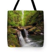 Hidden Falls At Rock Creek Tote Bag