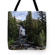 Hidden Falls - Grand Tetons Np Tote Bag