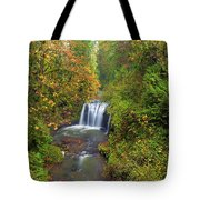 Hidden Falls In Autumn Tote Bag