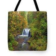 Hidden Falls In Autumn Tote Bag