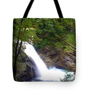 Hidden Falls Tote Bag