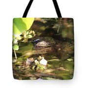 Hidden Gator Tote Bag