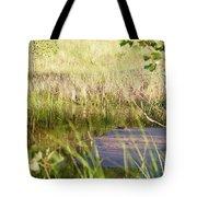 Hidden Grass Tote Bag