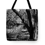 Hidden History Black And White Tote Bag