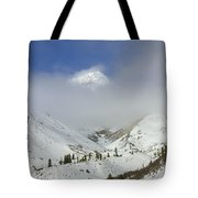Hidden In Fog Tote Bag