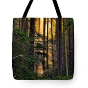 Hidden In The Forest Tote Bag