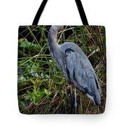 Hidden In The Reeds Tote Bag