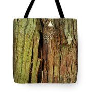 Hidden On The Tree Tote Bag