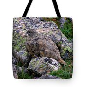 Hidden Ptarmigan Tote Bag