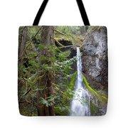 Hidden Rainforest Treasure Tote Bag