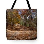 Hidden Road Tote Bag