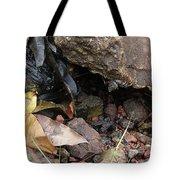 Hidden Sealife Tote Bag