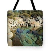 Hidden Shores Tote Bag