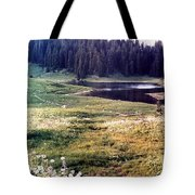 Hidden Valley Tote Bag