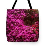 Hidden Window Tote Bag