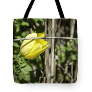 Hidden Yellow Tulip 02 Tote Bag