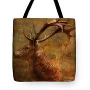 Hide And Seek 2015 Tote Bag