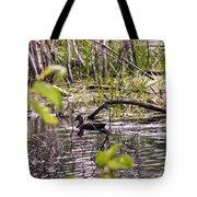 Hide And Seek Ducks Tote Bag