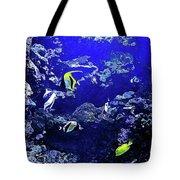 Hiding Fish Tote Bag