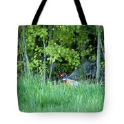 Hiding In The Grass. Pheasant Tote Bag