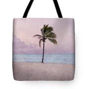 Higgs Beach - Key West Tote Bag
