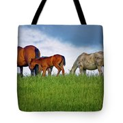 High Browsers Tote Bag