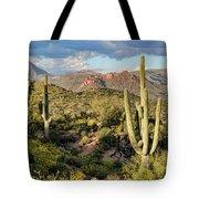 High Desert Peaks Tote Bag