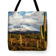 High Desert Snow Tote Bag