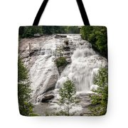 High Falls At Dupont Forest Tote Bag